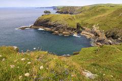 View from Tintagel Stock Image