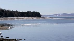 View of tip of Sears Island in Searsport Maine stock video