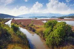 View of Tivat Solila -  special botanical and animal reserve. Montenegro Royalty Free Stock Image