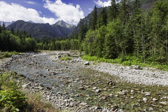 View to alps valley with the river in High Tatras national park, Royalty Free Stock Images