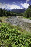 View to alps valley with the river in High Tatras national park, Slovakia Stock Image