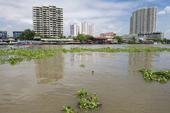 View to the Bangkok city buildings from the Chao Phraya River in Bangkok, Thailand. Stock Photos