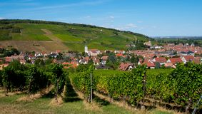 View to Barr in Alsace. View through the vineyards to the little village of Barr in Alsace in France stock images