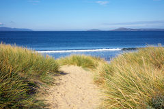 View to the beach, Tasmania. Looking out to sea from the sand dunes, Tasmania royalty free stock photography