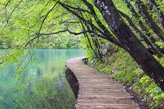 View to the boardwalk at Plitvice Lakes (Croatia) Stock Image
