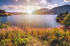 Free View To Bolboci Lake And The Damb With Carpathian Mountains At T Stock Photography - 110548382