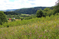 View to Carpathian mountains Royalty Free Stock Images