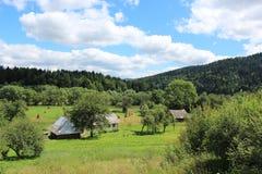 View to the Carpathian village Stock Photos