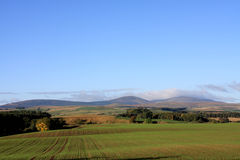 View to the Cheviot Hills Royalty Free Stock Photos
