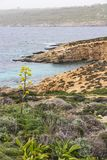 View to the Comino coastline with island vegetation, part of the Blue Lagoon and Gozo in the distance. View to the Comino coastline with island vegetation, part Stock Images