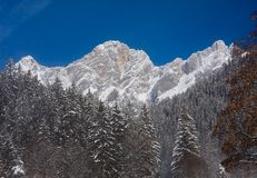 View to the Dachstein. Austria Stock Images