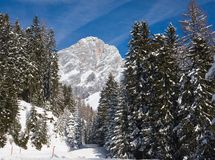 View to the Dachstein. Austria Royalty Free Stock Photography