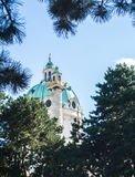 A view to a dome of Karlskirche at Vienna. A view to a dome of Karlskirche and pine trees at Vienna, Austria Royalty Free Stock Images