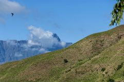 View to Drakensberg mountain Stock Photo