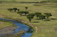View to Drakensberg mountain Royalty Free Stock Photo