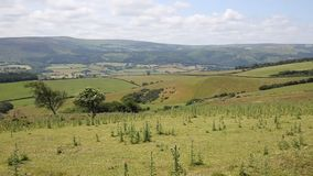 View to Dunkery Hill the highest point on Exmoor Somerset England UK PAN. stock video footage
