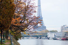 View to the Eiffel Tower from Swan island Stock Image
