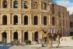 View to the entrance to the El Djem amphitheater in El Djem, Tunisia. Royalty Free Stock Photography