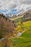 View to foothills of Caucasus mountains near Arkhyz, Karachay-Ch. View to the foothills of the Caucasus mountains over flowers and stream near Arkhyz, Karachay Stock Image