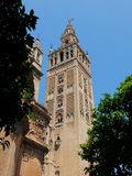 View To The Giralda. The Giralda of Santa Maria de la Sede, is constructed around a minaret of the original mosque upon which the cathedral was built. It's title Royalty Free Stock Photos