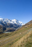 View To Grossglockner Highest Mountain In Austria 3.798m Stock Image