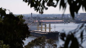 View to Havana harbour. With big cargo ship through tree branch and top of tree stock footage