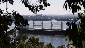 View to Havana harbour. With big cargo ship through tree branch and top of tree stock video