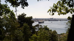View to Havana harbour. With big cargo ship through tree branch and top of tree, shot on tilt-shift lens stock video footage