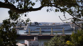 View to Havana harbour. Through tree branch and top of tree with big cargo ship sailing near big white cruise liner ship stock video footage