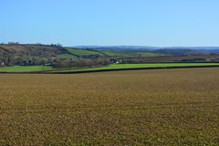 British agricultural landscape in winter on a clear, sunny day. stock photo