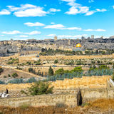 View to Jerusalem old city. Israel Royalty Free Stock Images