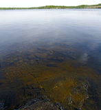 View to lake bottom and over the water surface Stock Image