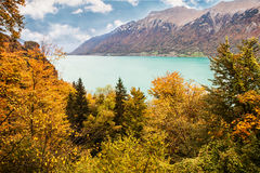 View to Lake Brienz in autumn beautiful weather, Bernese Highlands, Switzerland Stock Photography
