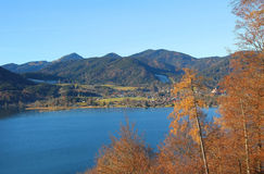 View to lake tegernsee, autumnal larch trees Stock Photography