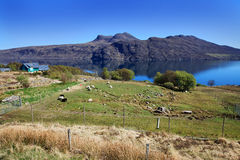 View to the Little Loch Broom Royalty Free Stock Photos