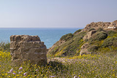 View to Mediterranean sea from the coast in Israel. View to Mediterranean sea from the coast and Apollonia's ruins.Israel Royalty Free Stock Photos