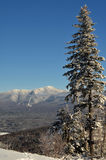 View to Mount Washington in New Hampshire. From summit of Bretton woods ski area at early winter Royalty Free Stock Image