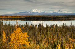 View to mount Wrangell and Zanetti Stock Photography