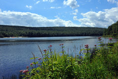 View to the mountain lake upstate NY at the summer time Royalty Free Stock Photography