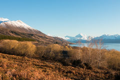 View to mt. Cook and Lake Pukaki at sunrise Stock Image