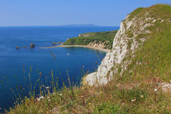View to mupe bay, lulworth, and steep cliffs Royalty Free Stock Photography