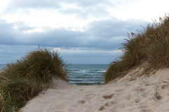 View to the Northsea from the dunes in Thy, Denmark. Dunes at the North sea coast in Denmark Stock Images