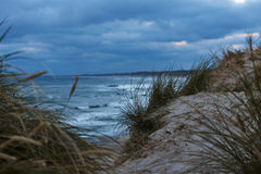 View to the Northsea from the dunes in Vorupor, Denmark Royalty Free Stock Images