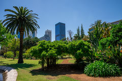 A view to Perth City from Government House landscaped gardens Stock Image