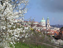View to Prague St. Nicolas Dome at spring Stock Photography