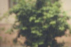 View to raining weather through the home window. Raindrops on the window glass. Heavy raining outdoors. Spring rain season. View to raining weather through the stock photo