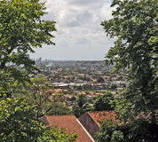 A view to Recife. Recife, Pernambuco, Brazil, 2009. A view to Recife through the trees from the hills of Olinda Royalty Free Stock Photos