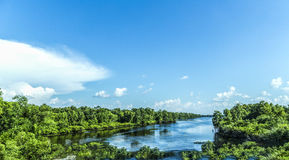 view to the river Mississippi with its wide river bed and untouched nature stock image