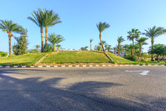 The view to road and palm trees near the hotels. The view to road and palm trees near the buildings of hotels territory in Egypt Royalty Free Stock Photos