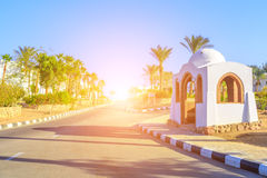 The view to road and palm trees near the hotels. The view to road and palm trees near the buildings of hotels territory in Egypt Stock Photo